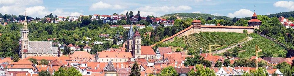 Fachanwalt Verkehrsrecht Esslingen am Neckar