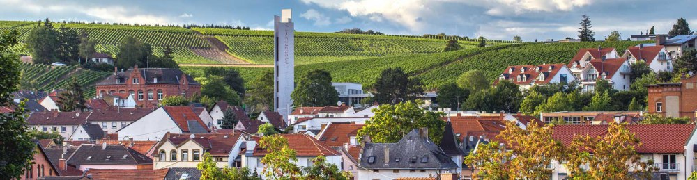 Fachanwalt Erbrecht Bad Kreuznach